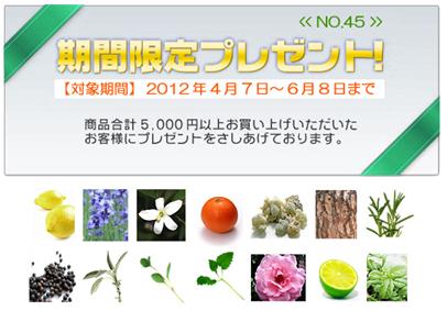 present2012.jpg