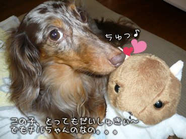 chiru_goods_wan-01.jpg