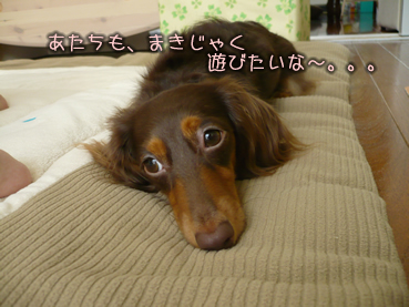 chiru_juri-11.jpg