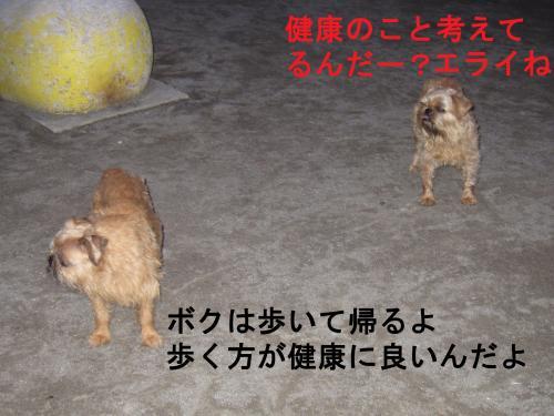 033-2222_convert_20110801011127.jpg