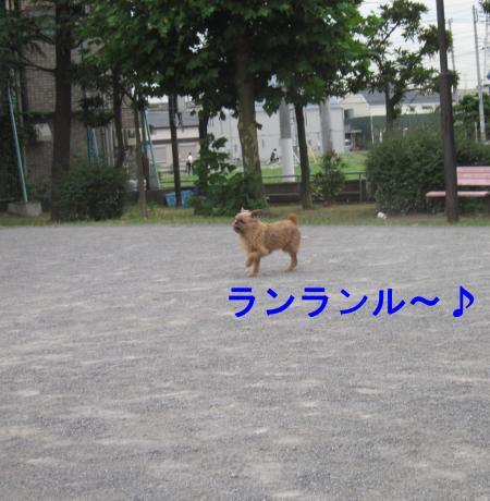 087-2-2_convert_20110802005502.jpg