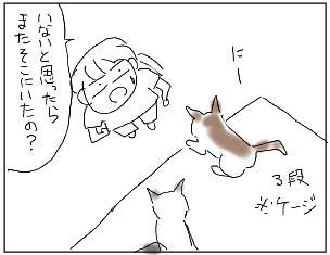 080816_01.jpg