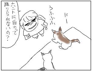 080816_02.jpg