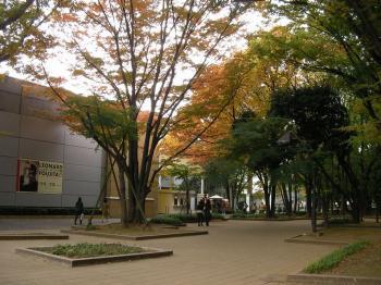 藤田入口2