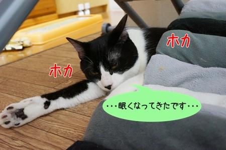 眠くなった!