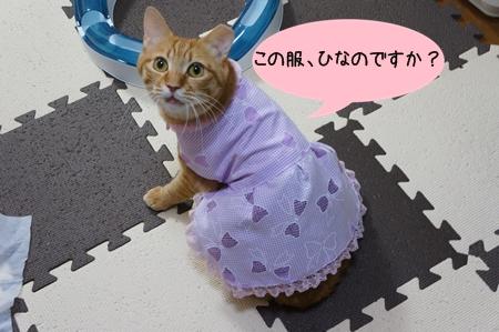 ひなの服?