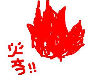 snap_nemurinokogorou_200873153732.jpg