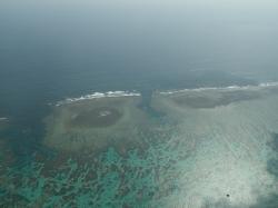 空から珊瑚礁