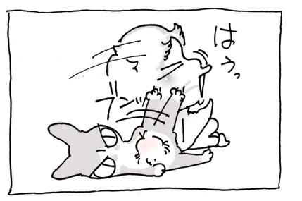 20080830_11.jpg