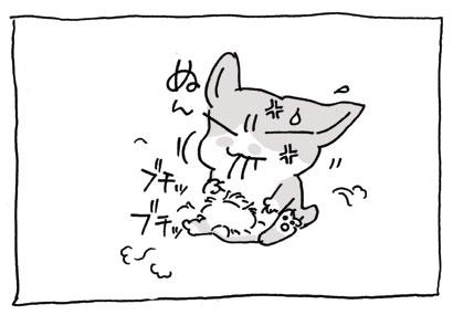 20080830_5.jpg