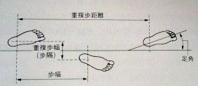 201108191022000.jpg