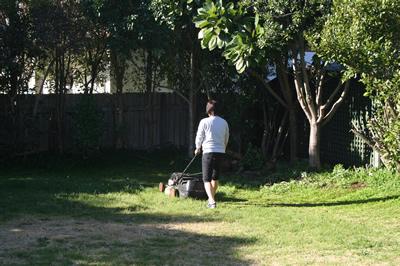 芝刈り09年7月26日