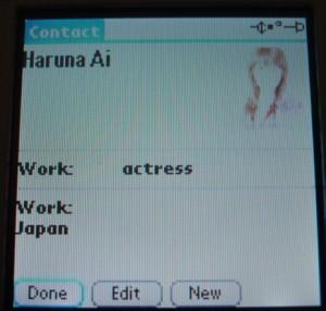 Palm11.jpg