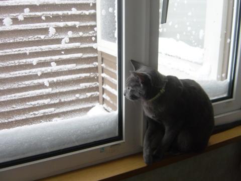 吹雪その2-1