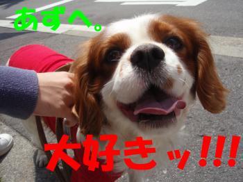 縺ゅ★_convert_20081026005016