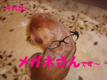 11・・6繧√′縺ュ縺輔s_convert_20081116091019