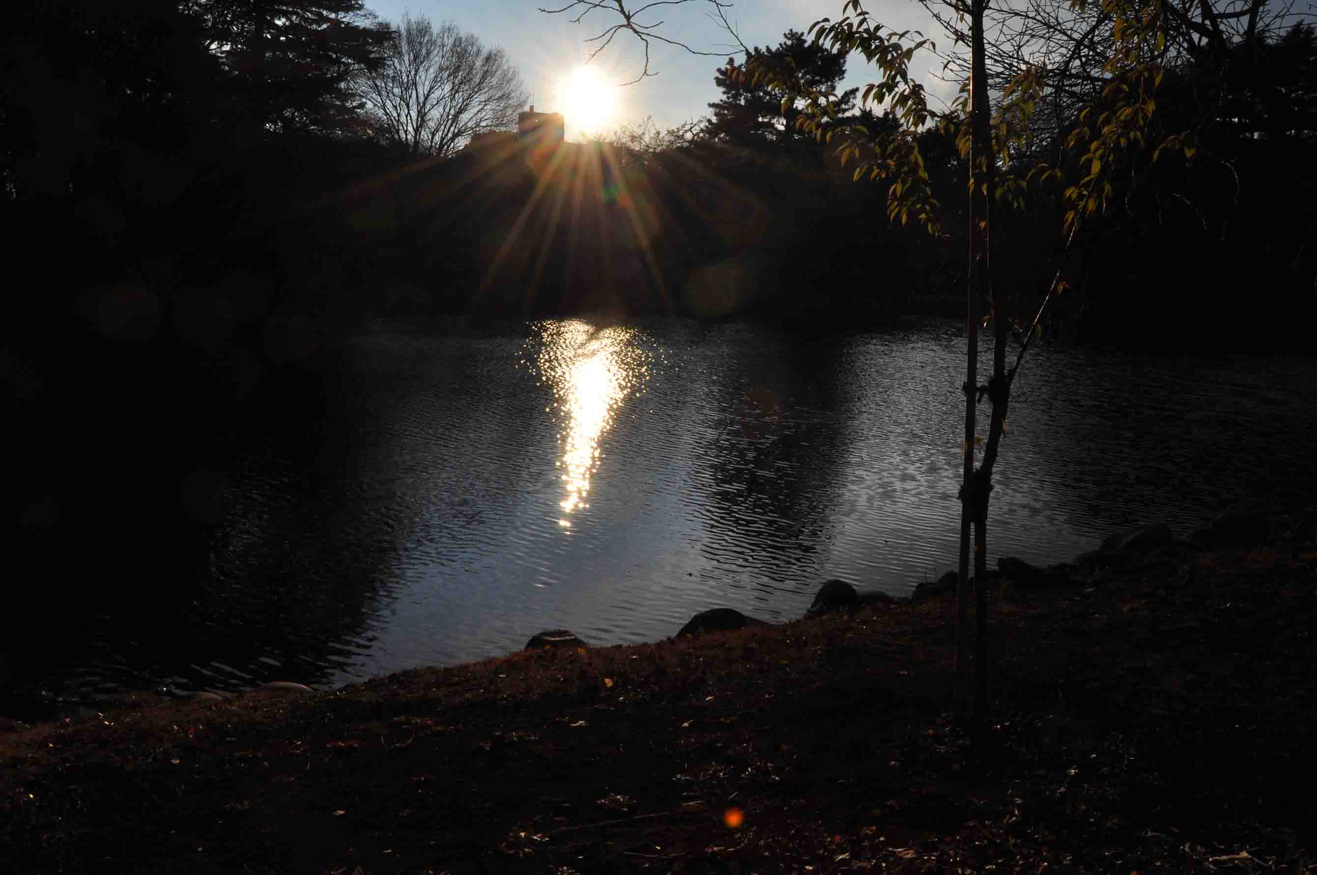 DSC_3004「落日の池」