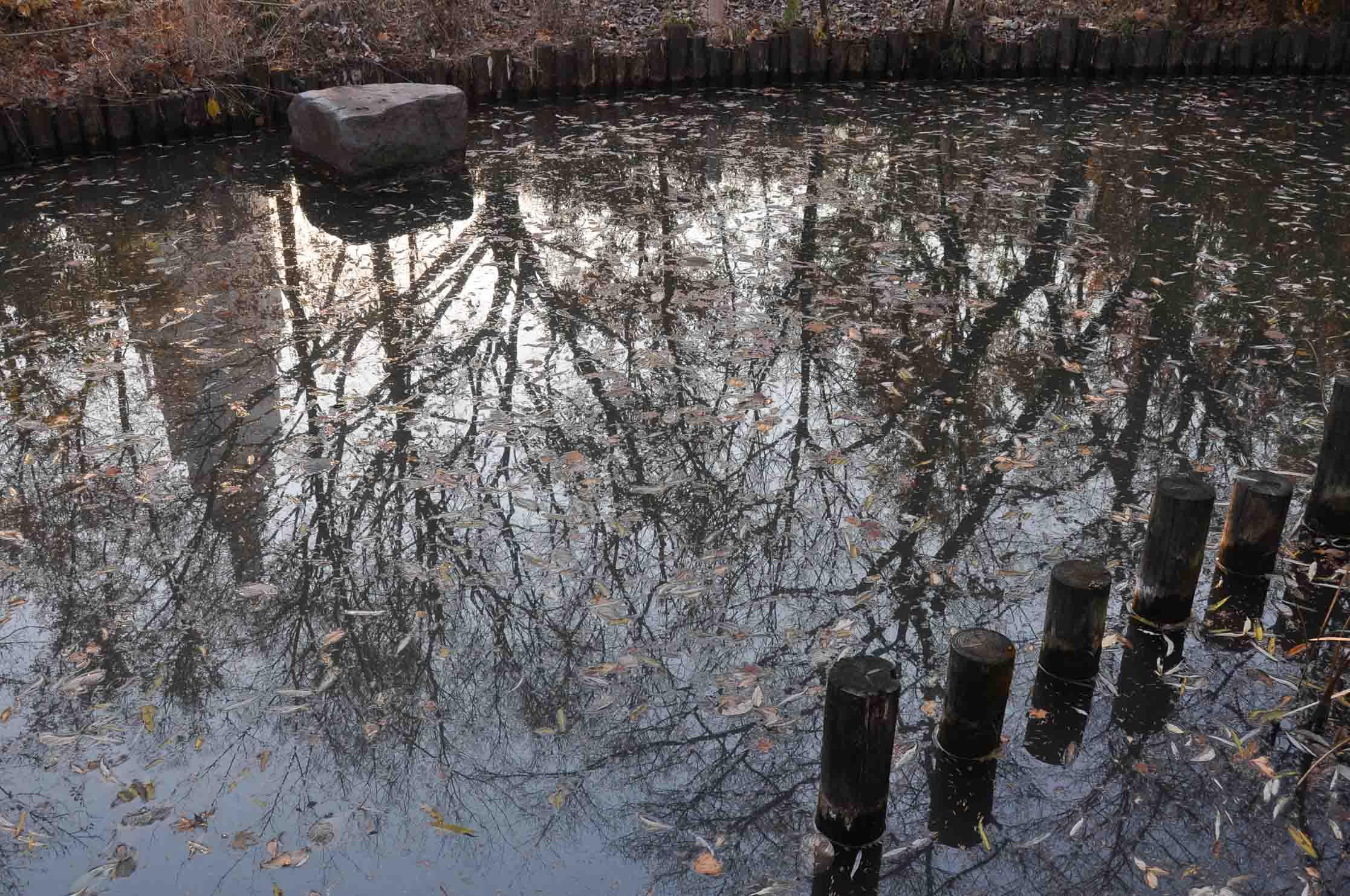DSC_2729A「池面に塔」