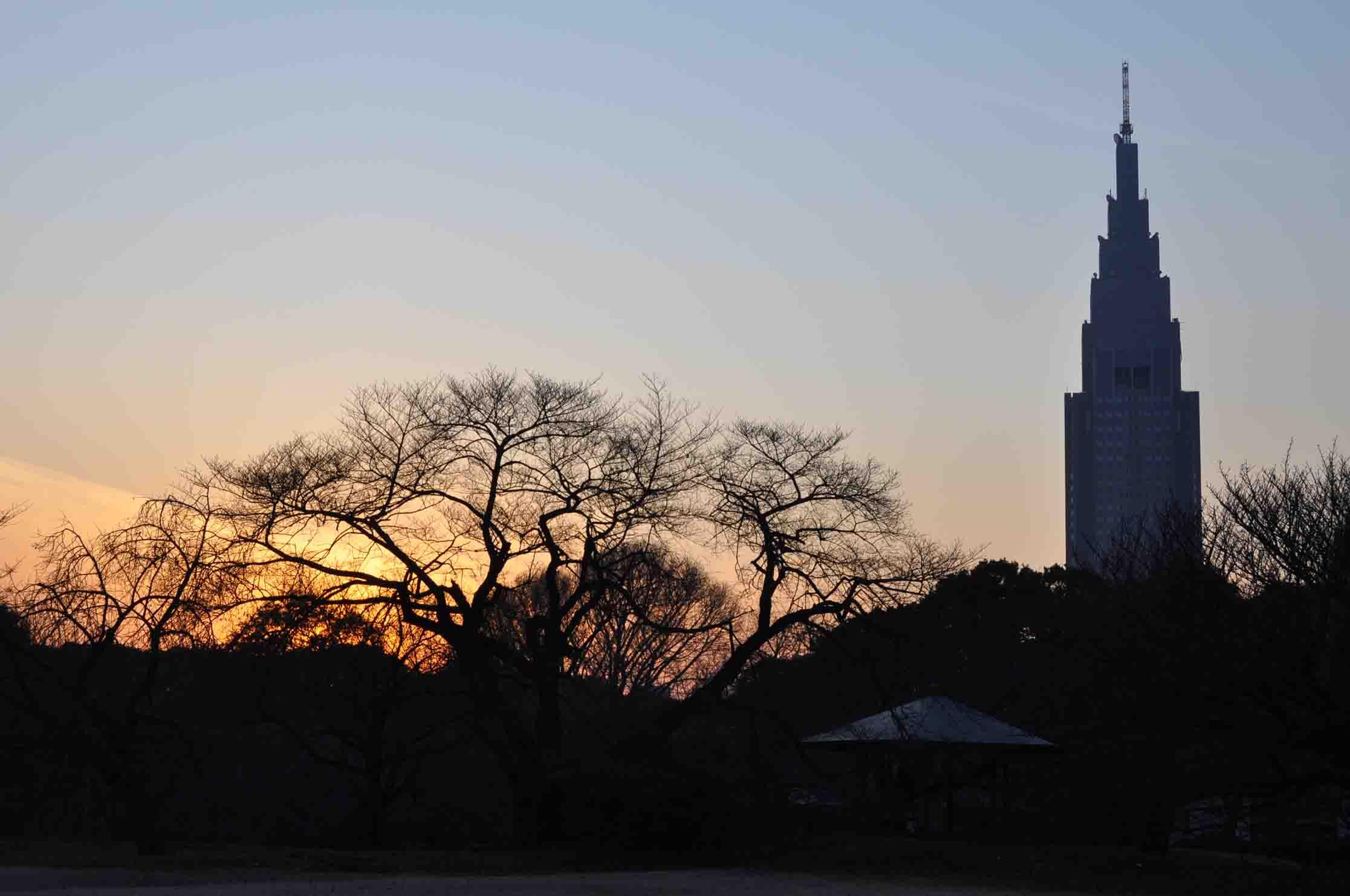 DSC_2803A「塔と木立がシルエット」