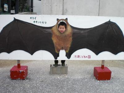 2009.01.09 沖縄旅行 060