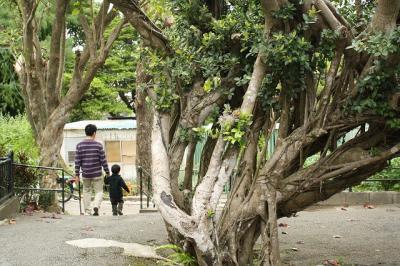 2009.01.09 沖縄旅行 071