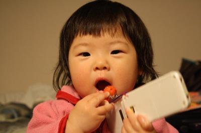2009.01.11 沖縄旅行 304