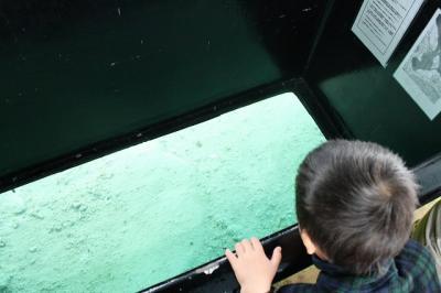 2009.01.12 沖縄旅行 070