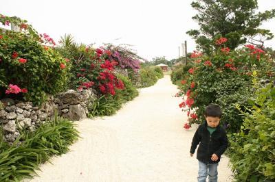 2009.01.12 沖縄旅行 159