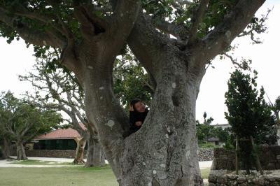 2009.01.13 沖縄旅行 108
