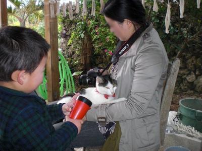 2009.01.13 沖縄旅行 204