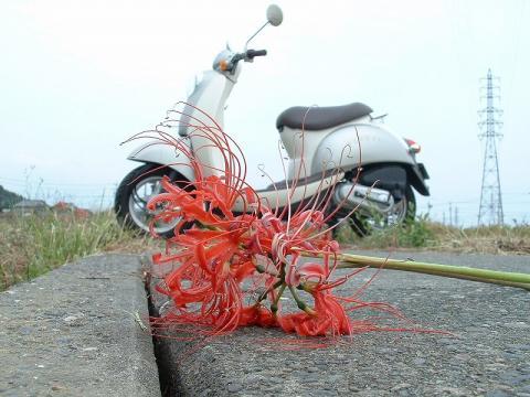 060926-Bike