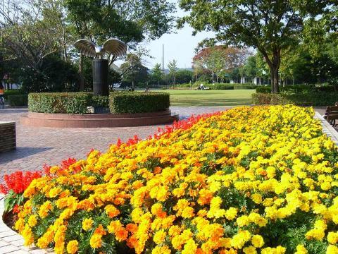 061111-Park