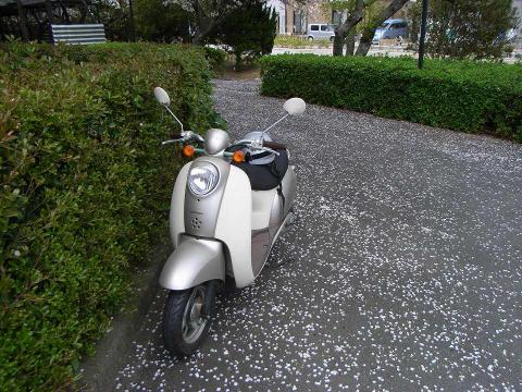 070408-Scoopy1