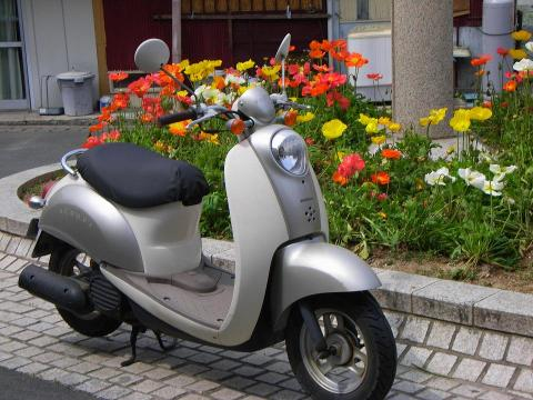 070408-Scoopy2