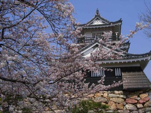 080326-Hamamatsu-Castle01