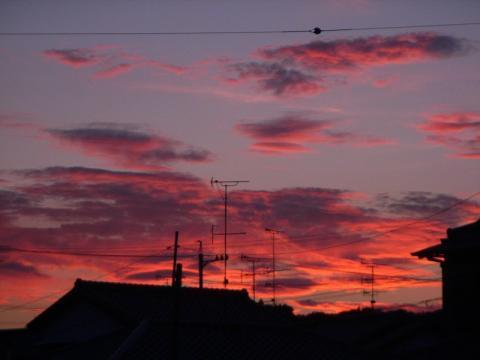 080902-Sunset