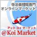 @koiMarket