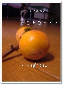 komikaki200811121.jpg