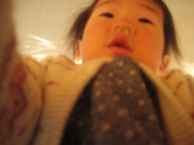 blog画像 006-2