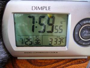 33.3℃