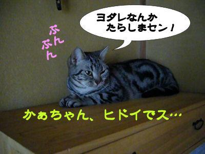 ヨダレなんか!
