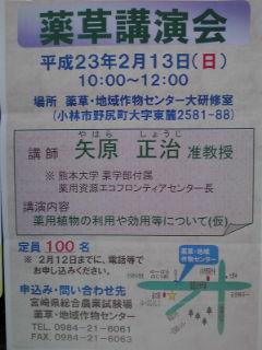 薬草講演会ポスタ110213