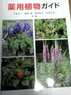 薬用植物ガイド表紙110213