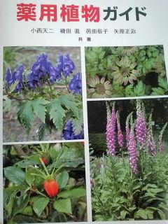 薬用植物ガイド本表紙110215