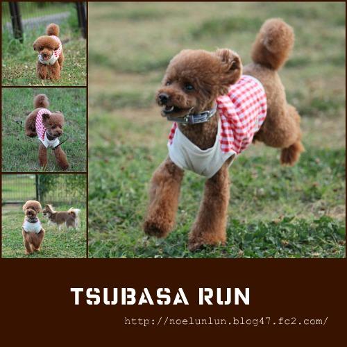 tsubasa run