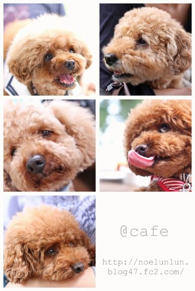 @cafe.jpg