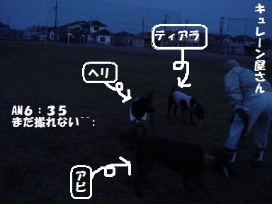 12.7-1.jpg