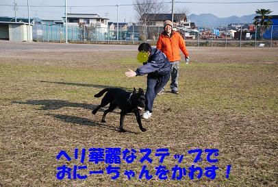 DSC_0113-1.jpg