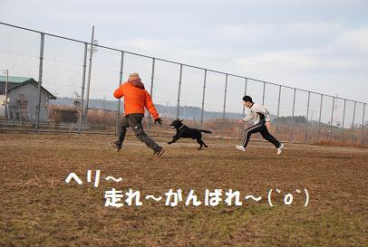 DSC_03521.4-6.jpg