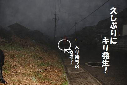 DSC_0849.1.18-3.jpg